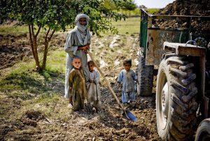 Bauern beim Schlafmohnanbau