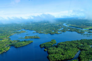 Aerial view of the Amazon Rainforest, near Manaus, the capital of the Brazilian state of Amazonas, Brazil.