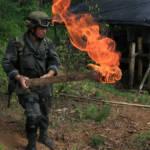 Kolumbianischer Polizist bei der Zerstörung eines Drogennlabors. | Bild (Ausschnitt): © Policia Nacional de los colombianos [CC BY-SA 2.0]  - flickr